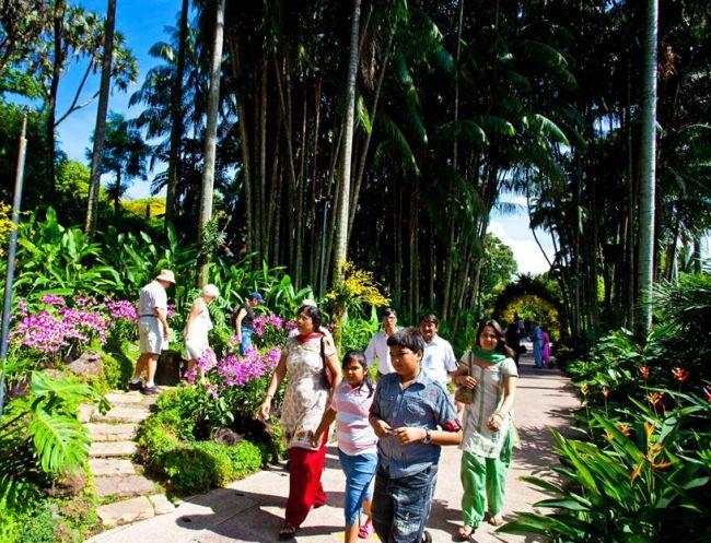 Activities at the Botanic Gardens: Garden Foliage Tour