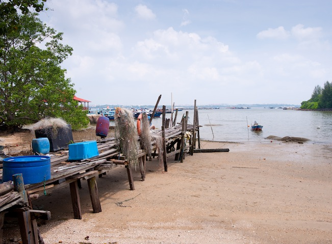 Get a glimpse into rustic village life at Pulau Ubin.