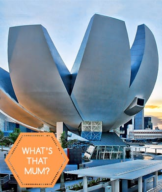 Singapore's iconic attractions explained!