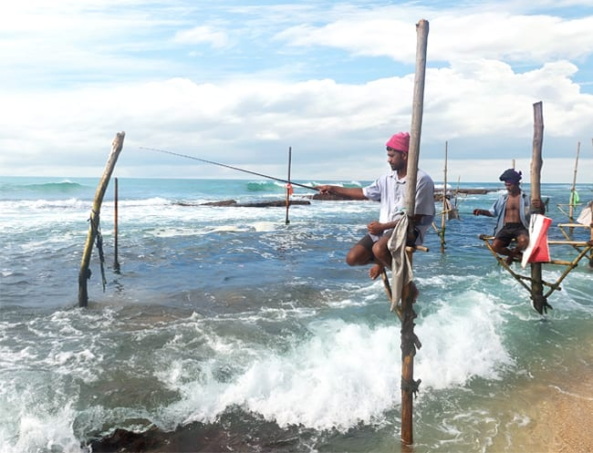 Catch the family their dinner fresh from the ocean with a spot of traditional stilt fishing in Sri Lanka.