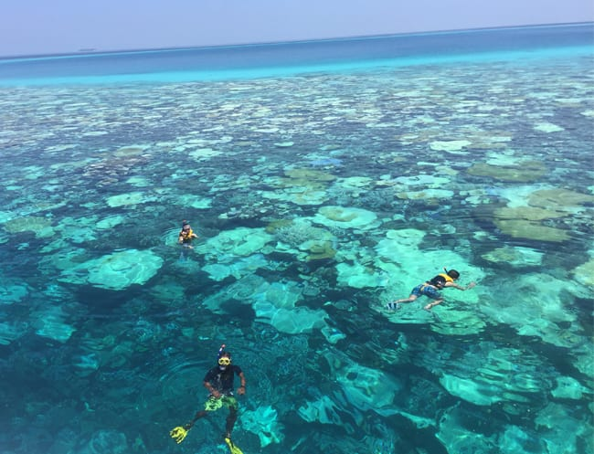 Go snorkelling in the Maldives in calm, clear waters.