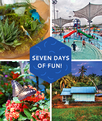 Seven Days of school holiday adventure!