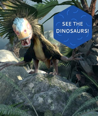 Dinosaurs like you've never seen them before!