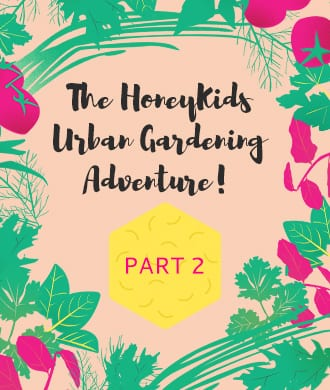 Urban gardening: growing plants from seed
