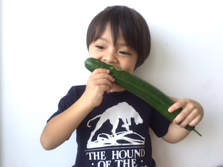 An urban gardening success story: this little guy couldn't wait to try the cucumbers we grew on the balcony!