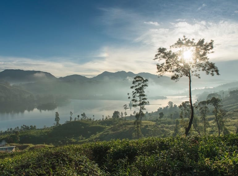 If ever there was a place to soak up some peace and quiet then it's on a tea trail in Sri Lanka...