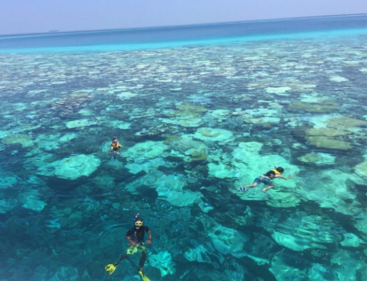 Maldives snorkelling best family holidays from Singapore HoneyKids Asia