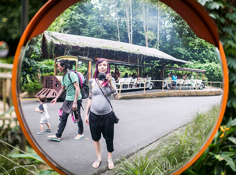 Family Spending the day at the Singapore zoo