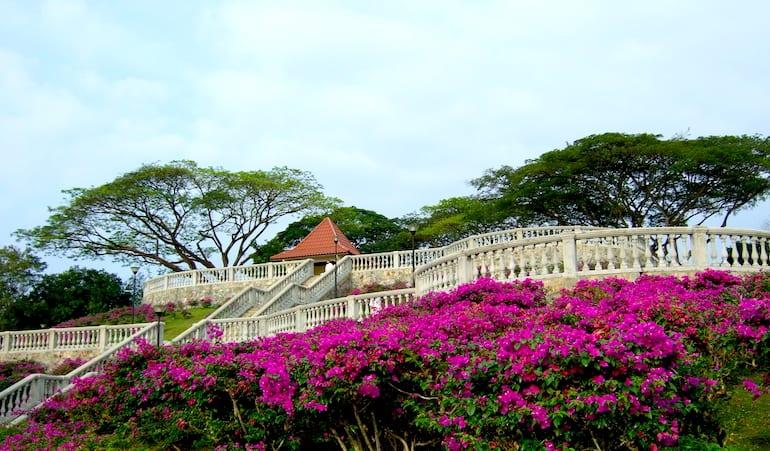 telok blangah hill park honeykids asia prettiest parks