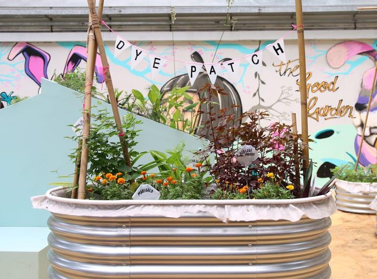 The Artground Good Garden children in Singapore HoneyKids Asia
