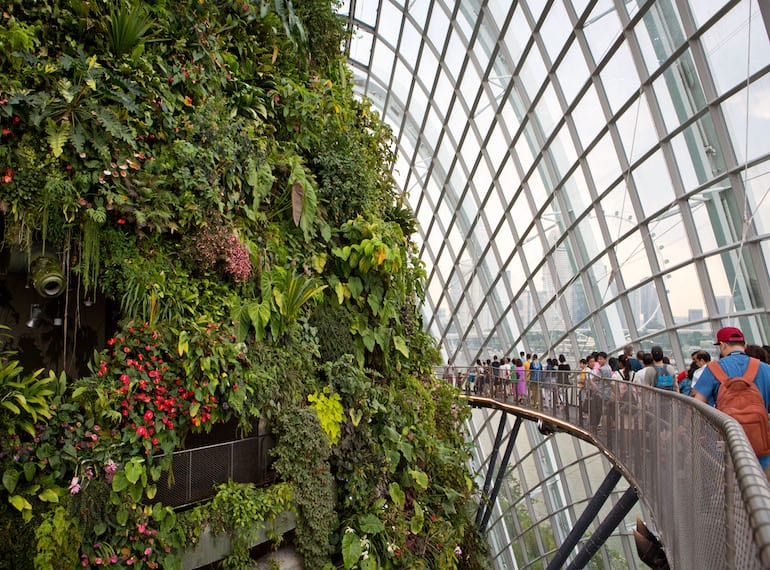 Gardens by the Bay Honeykids Asia Singapore Photography by Hayley Durack of Polkadot Photography