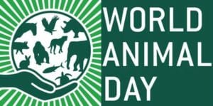 world animal day Honeykids Asia