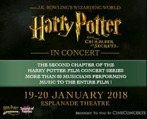 Harry potter and the chamber of secrets Honeykids Asia Singapore