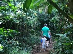 Dairy Farm Nature Reserve is a great place to take the kids hiking in Singapore