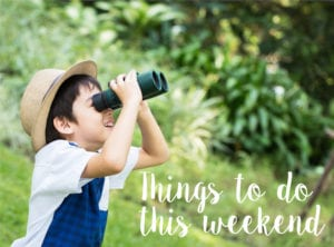 10 things to do with the kids this weekend in Singapore: 12-13 January 2019