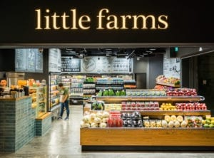 Little-Farms-Tanjong-Pagar-Centre-Interior-3 Honeykids Asia Singapore