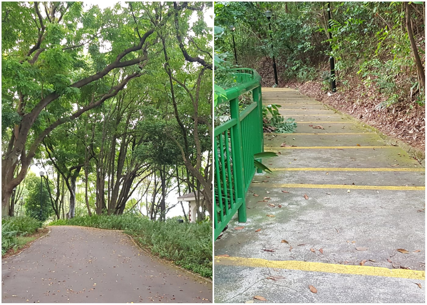southern ridges singapo