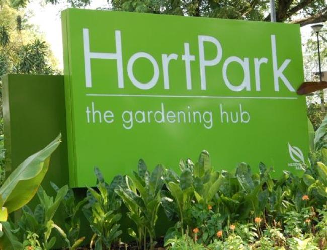 Hortpark Singapore Events Gardener S Day Out Honeykids