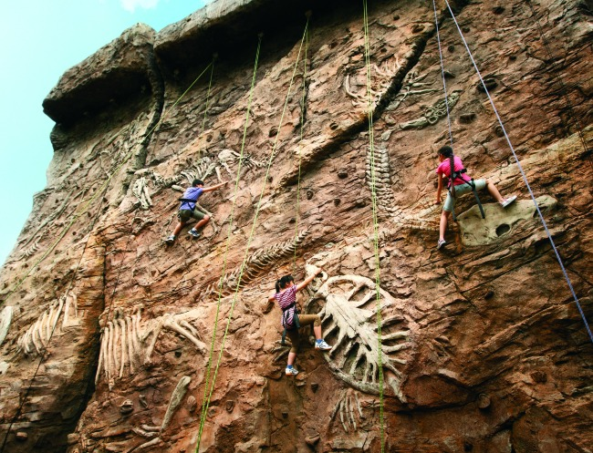 Universal Studios Singapore | rock climbing for kids