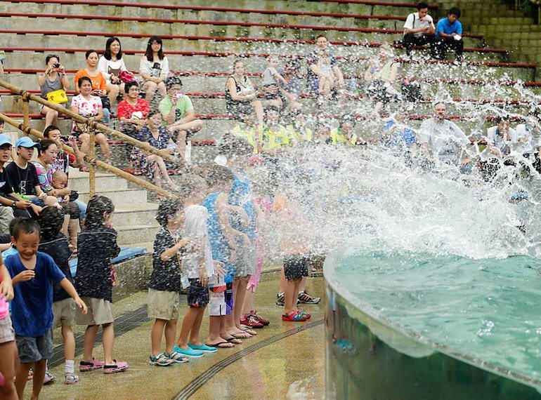 Get-splash-ready Singapore Zoo Honeykids Asia