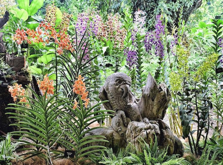 National-Orchid-Garden grandparents Honeykids Asia Singapore