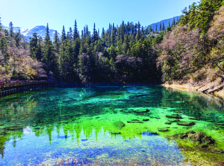 Nature and wildlife family holidays | The national parks around Asia you need on your travel radar