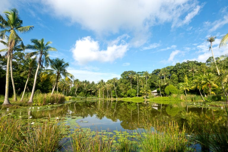Outdoor activities in Singapore: Explore Pulau Ubin with the kids at Pesta Ubin 2019