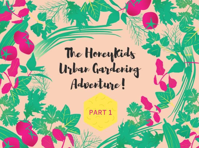 Gardening in Singapore: The HoneyKids Urban Gardening Adventure with Aerospring