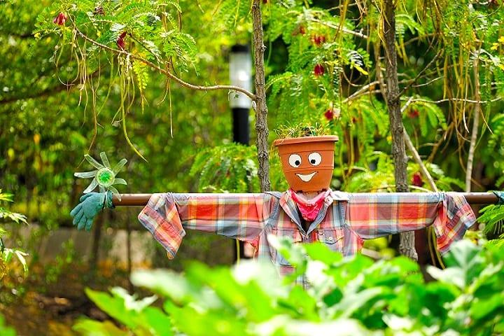 HortPark honeykids asia prettiest parks