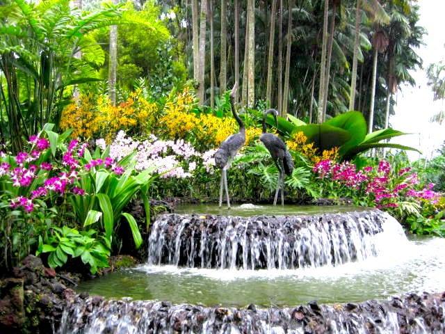 National Orchid Garden Singapore Botanical Gardens honeykids asia prettiest parks