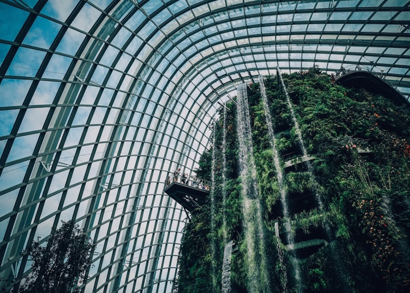 gardens by the bay with kids cloud forest