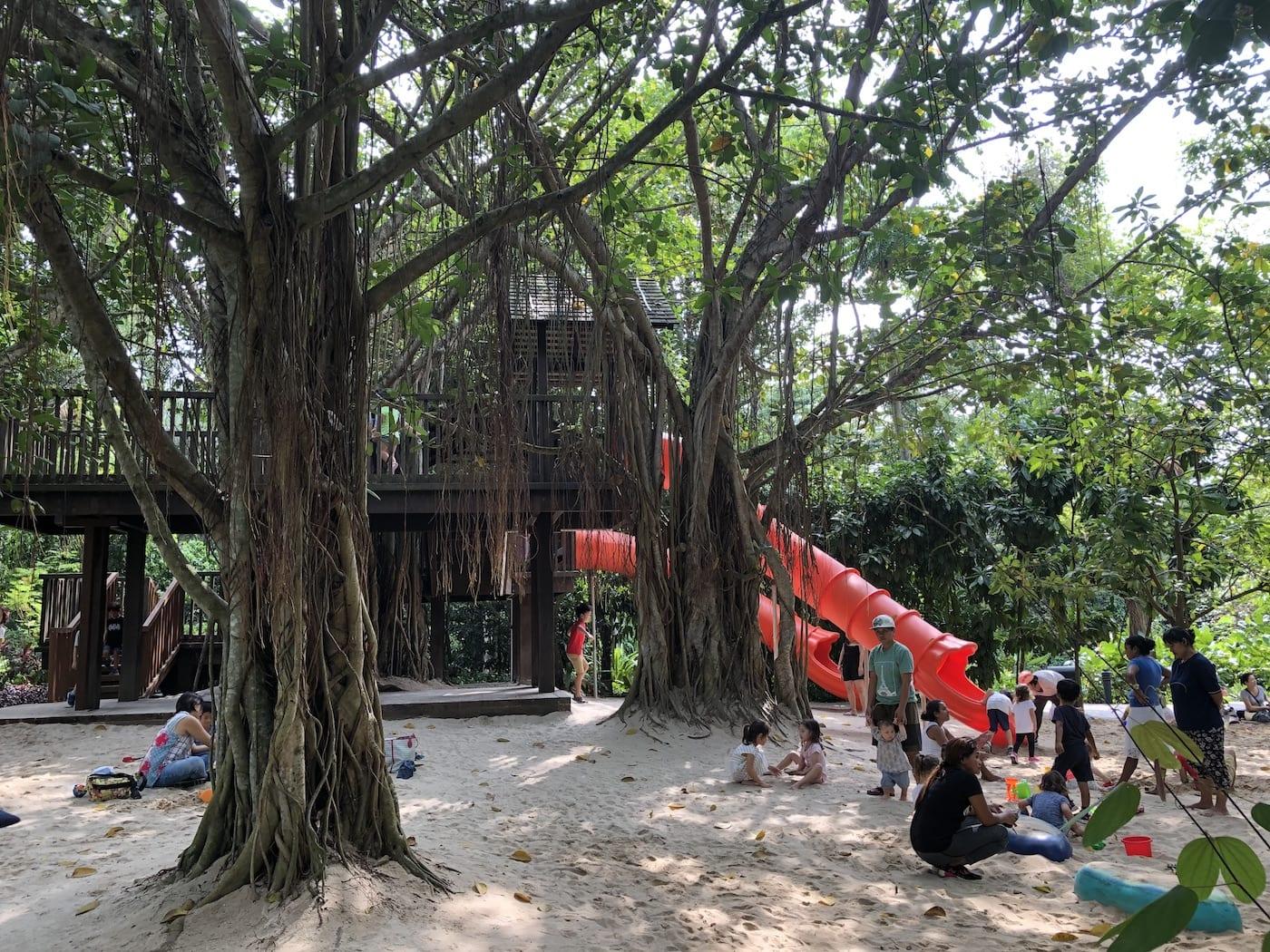 singapore botanic gardens with kids play area