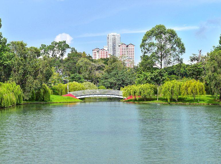 Bishan-Ang Mo Kio Park Honeykids Asia Singapore