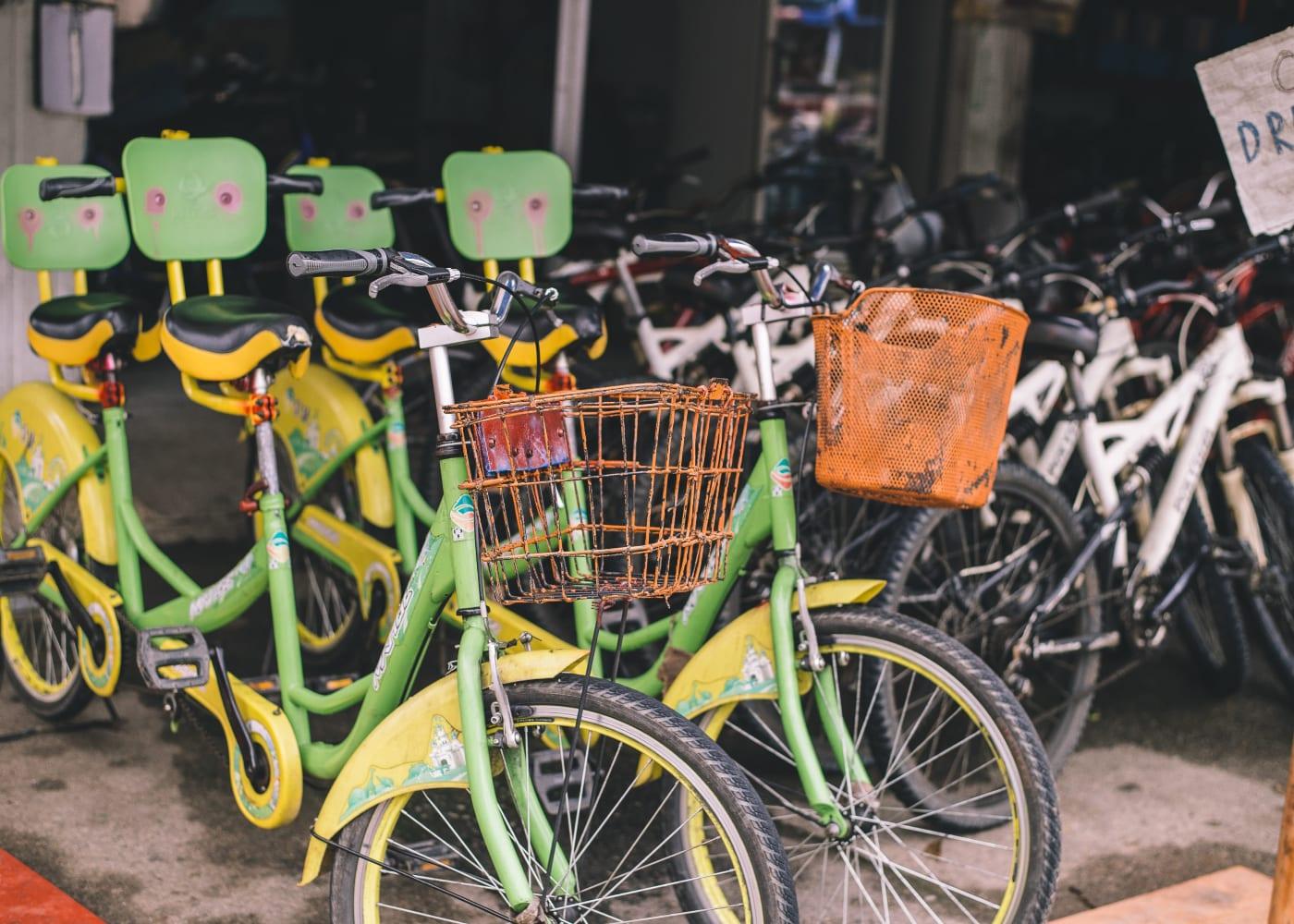 pulau ubin bike rides in singapore