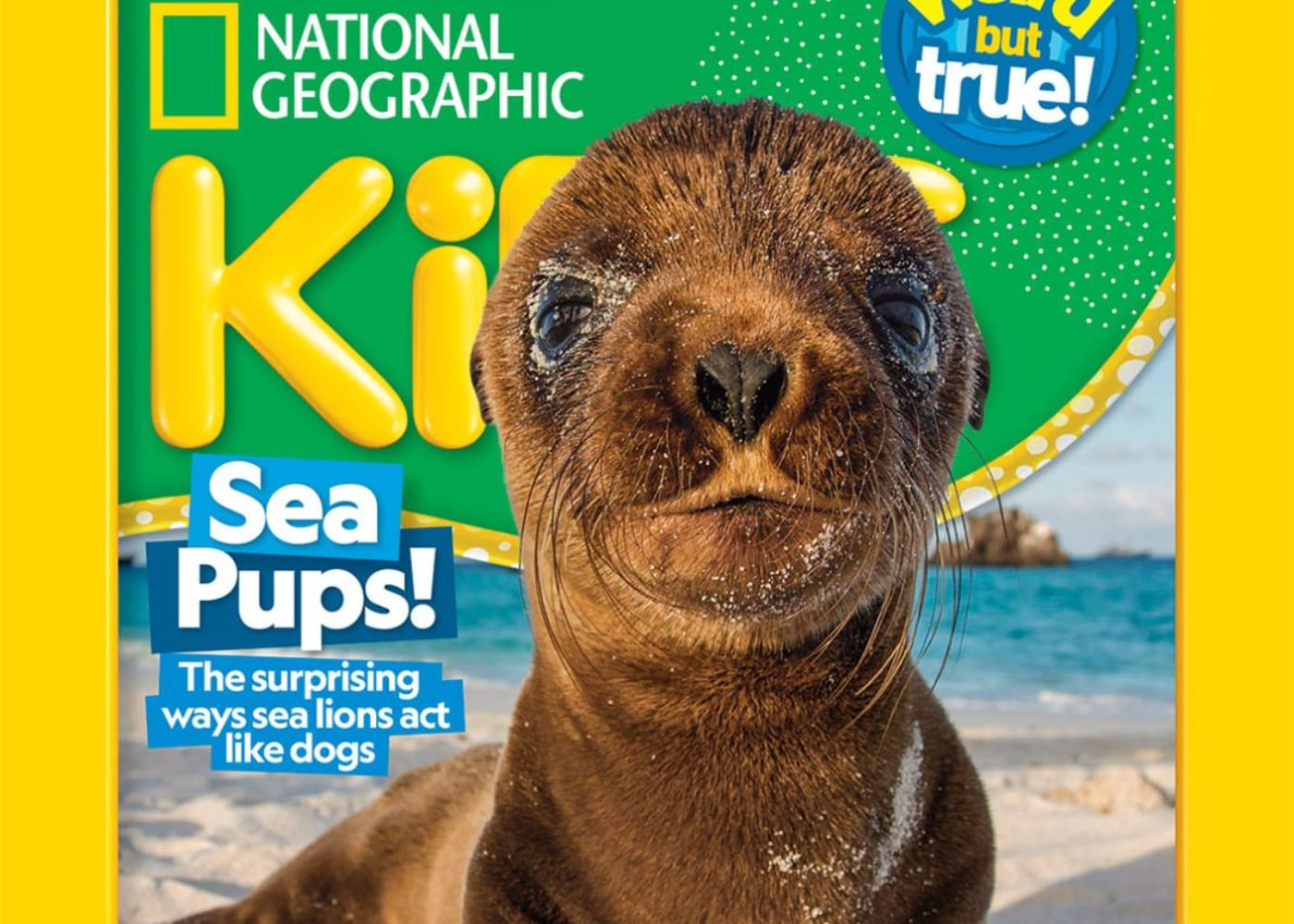 National Geographic Kids | magazine subscriptions for kids in singapore