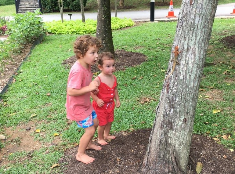Children looking at lizard on a tree, green spaces Singapore