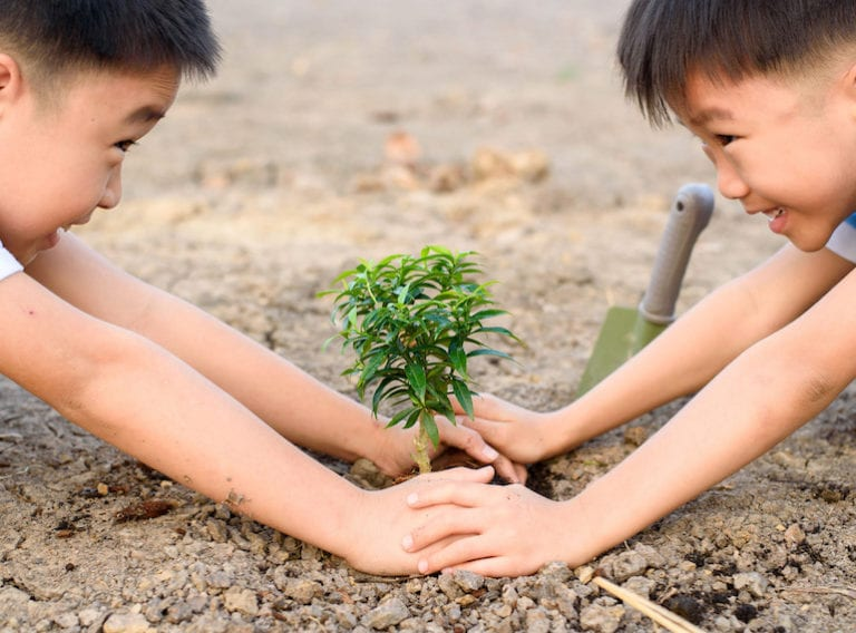 How to flex those green fingers and get the kids into urban gardening