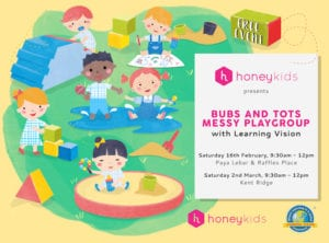 Registration Form for HoneyKids Playgroup with Learning Vision