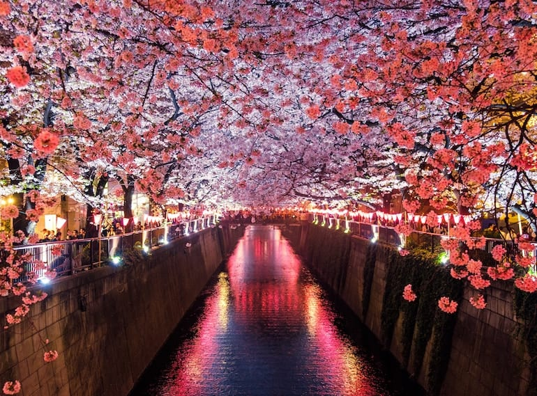 romantic-getaways-from-Singapore-for-parents-TOKYO