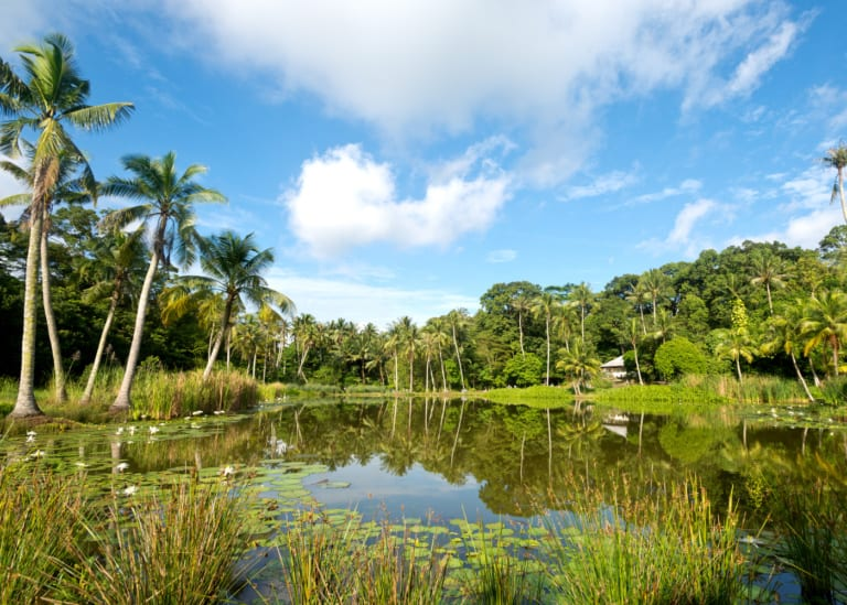 All you need to know: how to get to Pulau Ubin and what to do there