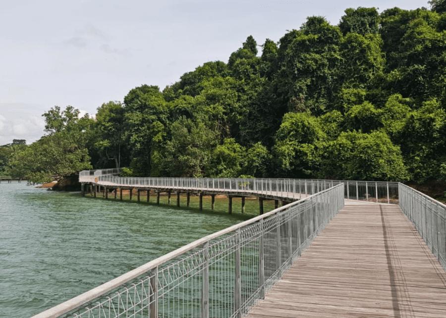coastal boardwalk chek jawa