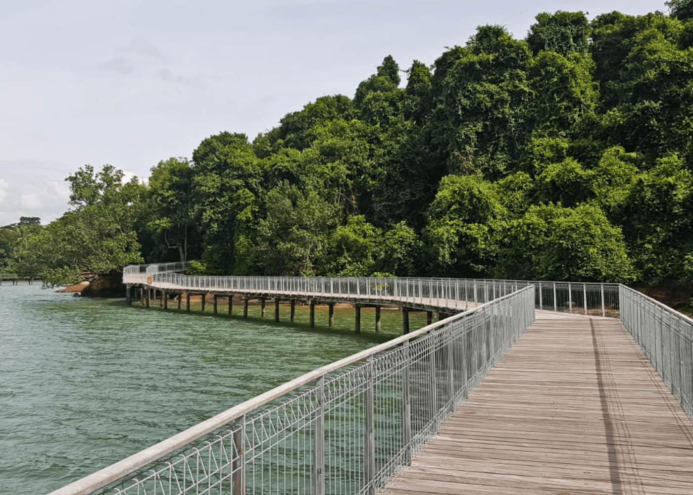 best beaches in Singapore Pulau Ubin