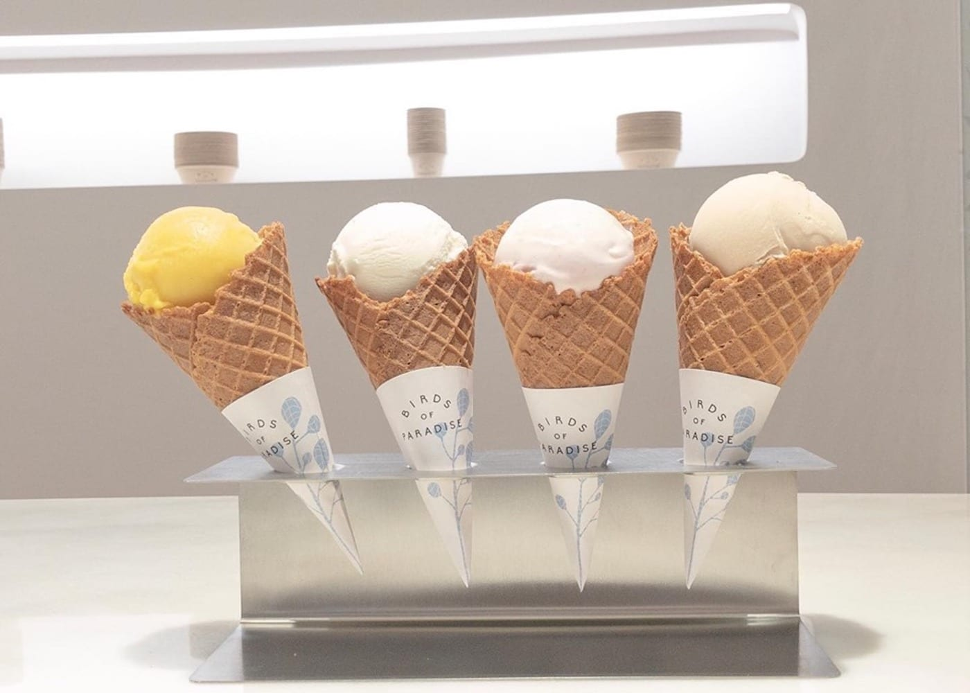 Best places in Singapore for ice cream, gelato, waffles and popsicles: Birds of Paradise on East Coast Road and at Jewel Changi