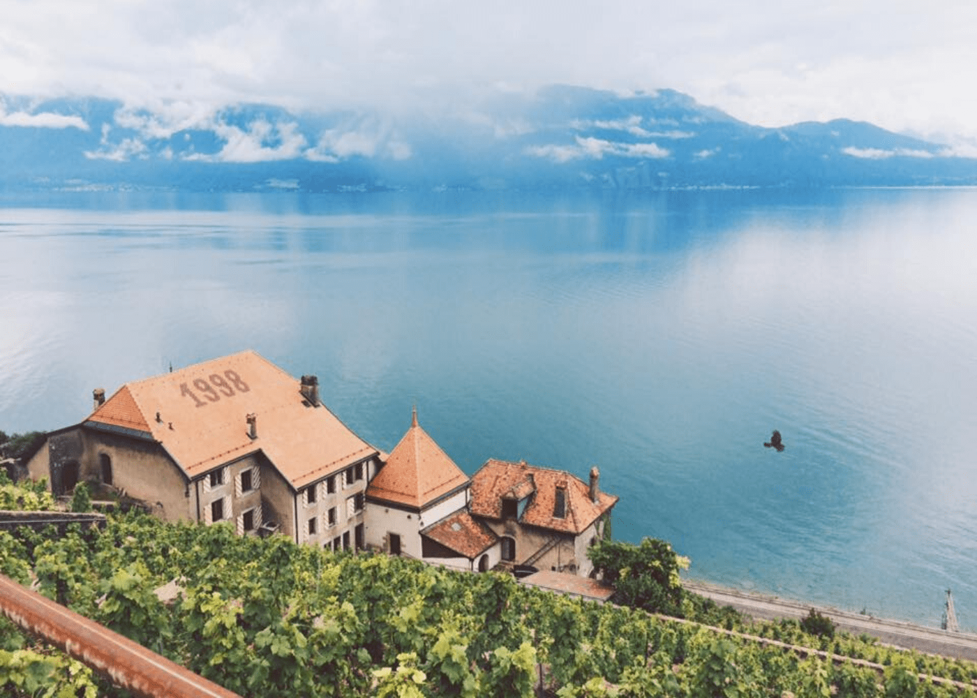 vineyards of lavaux family friendly hikes HERO