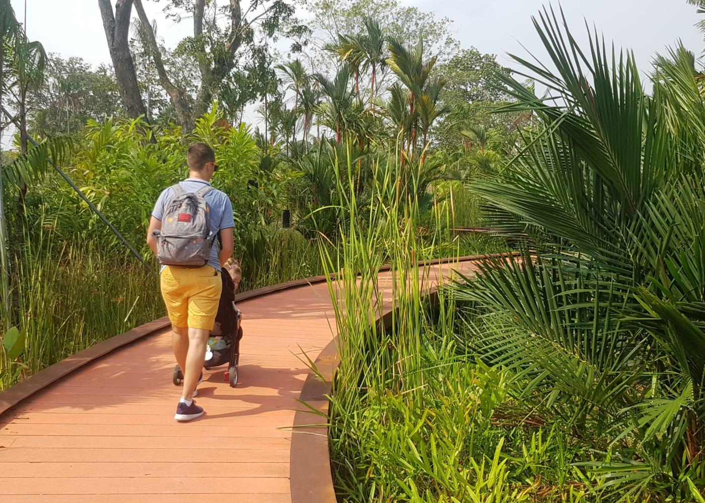 pram friendly walk stroller jurong